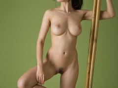 jasmine_65000_11