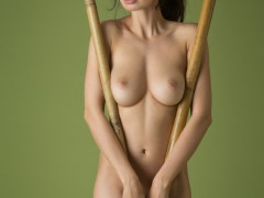 jasmine_65000_5