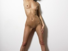 tacha_239_16