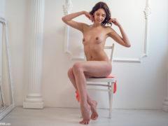 11 7 240x180 - Suczka na krześle