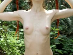 348176 14big 240x180 - Ruda laska w lesie